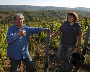 Vigneto-biologico-Claude e Lydia Bourguingnon