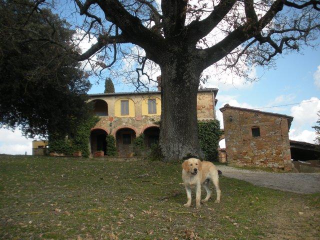Colle Piccino e Felix