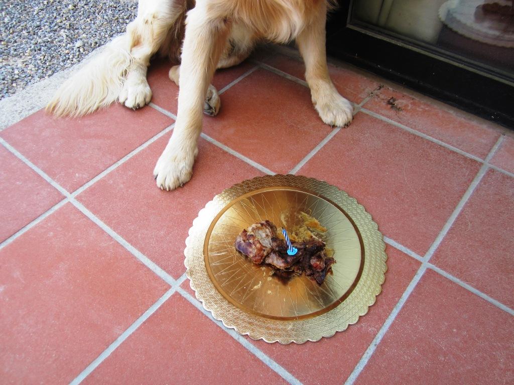 Torta di compleanno di bistecca per Felix