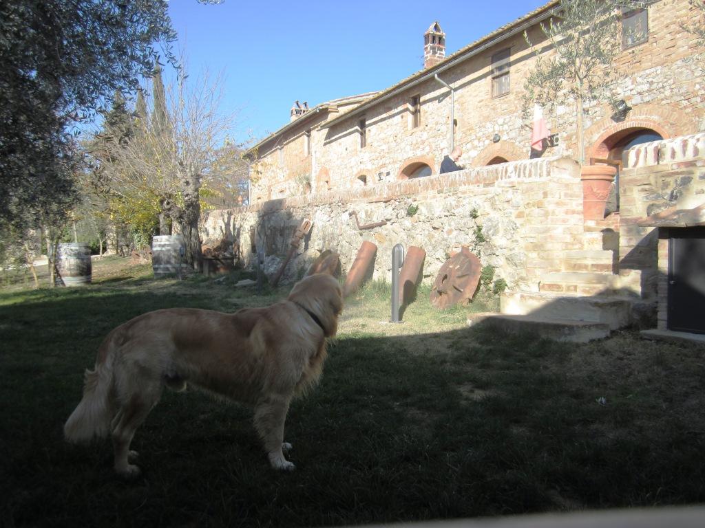 Fattoria del Colle Parco del vecchio Frantoio
