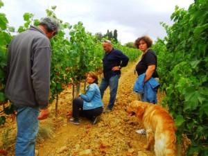 Fattoria-del-Colle-inspection in the vineyards-Valérie-Lavigne