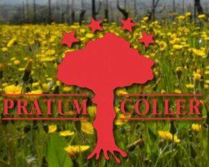 Pratum Coller