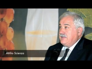 Attilio Scienza
