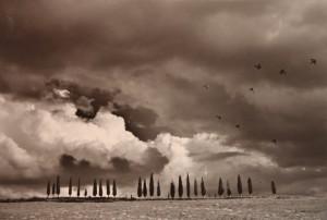 Duccio Nacci, Vincitore 2010