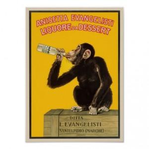 scimmietta alcolista