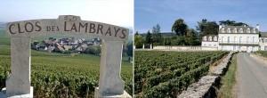 Clos-des-Lambrays-vineyard-chateau