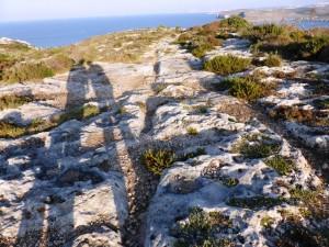 Gozo collina di Hondoq zazzi