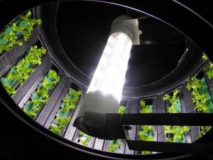 orto rotante padiglione Belgio Expo