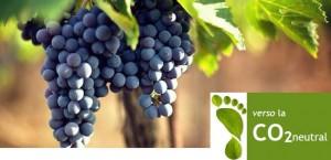 Progetto Carbon Footprint - vino Nobile