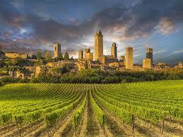 San_Gimignano e vigne di vernaccia