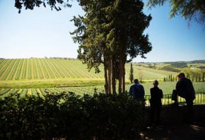 Agenzie-turistiche-per-wine-tours