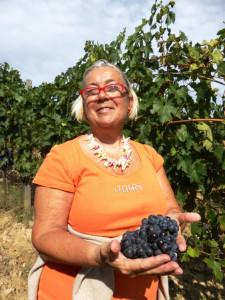 DonatellaCinelliColombini-vigneto-coltivazione-biologica