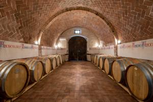 wine tour alla Fattoria del Colle