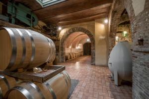 Fattoria del Colle wine tour in cantina