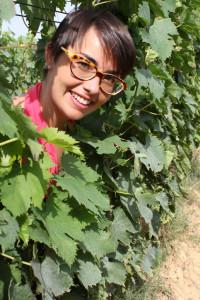 Sangiovese spalliera fine luglio 2013 Violante Gardini