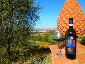 Agriturismo-Toscana-Fattoria-del-Colle-panorami e Brunello