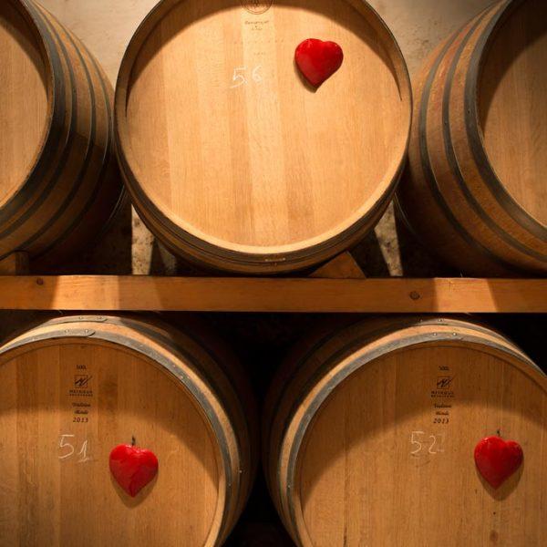 gallery-wine-class1