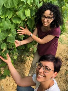 Vigneti-giugno-2018-in-Toscana-Alessia-e-Giulia-mostrano-il-Foglia-Tonda