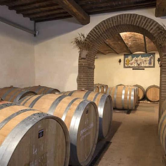 cantine aperte Montalcino
