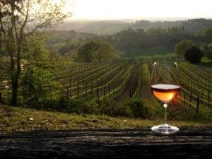#winewindow-Donne-del-Vino