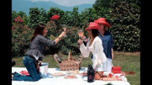 Wine-passport-di-Francesca-Negri