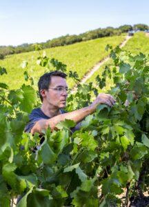 Chris Brockway di Broc Cellars- vini fatti con pochissimo intervento umano