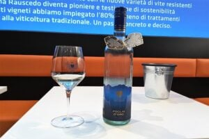 foglia-d-oro-vini-da-vitigni-ibridi-resistenti