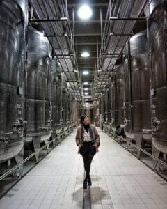 Wine instagramer - WineGini