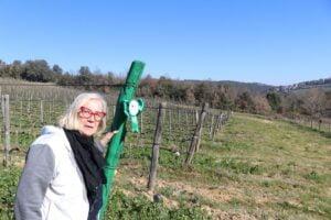 Donatella Cinelli Colombini - Donne Vino e Ambiente - Festa delle Donne del Vino 2021