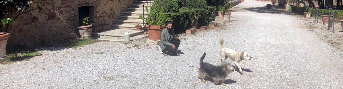 Pet fiendly Agriturismo in Tuscany
